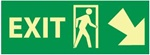 Glow in the Dark Exit Arrow Right and Down Sign - 5 X 14 - Pressure Sensitive Vinyl or Rigid Plastic