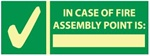 Glow in the Dark In Case Of Fire Assembly Point Is: Sign - 5 X 14 - Pressure Sensitive Vinyl or Rigid Plastic